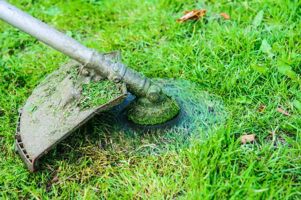 How a Weed Eater Work