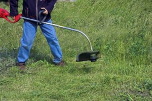 What Causes a Weed Eater to Bog Down?