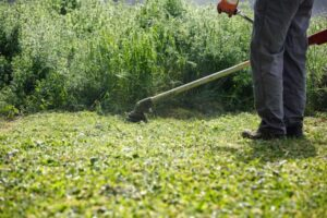 Best String Trimmers: The Secret to a Healthy Lawn