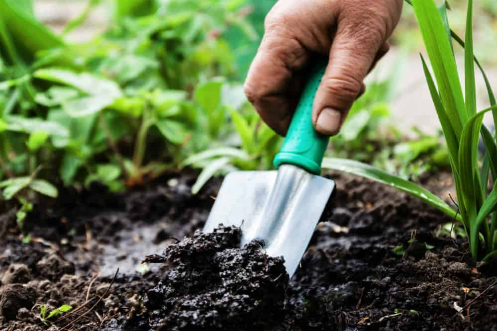How to Use a Trowel Correctly: A Guide to Effective Gardening