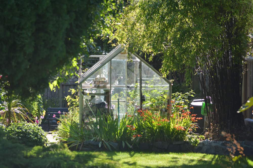 How to Use a Greenhouse to Its Fullest Potential 2