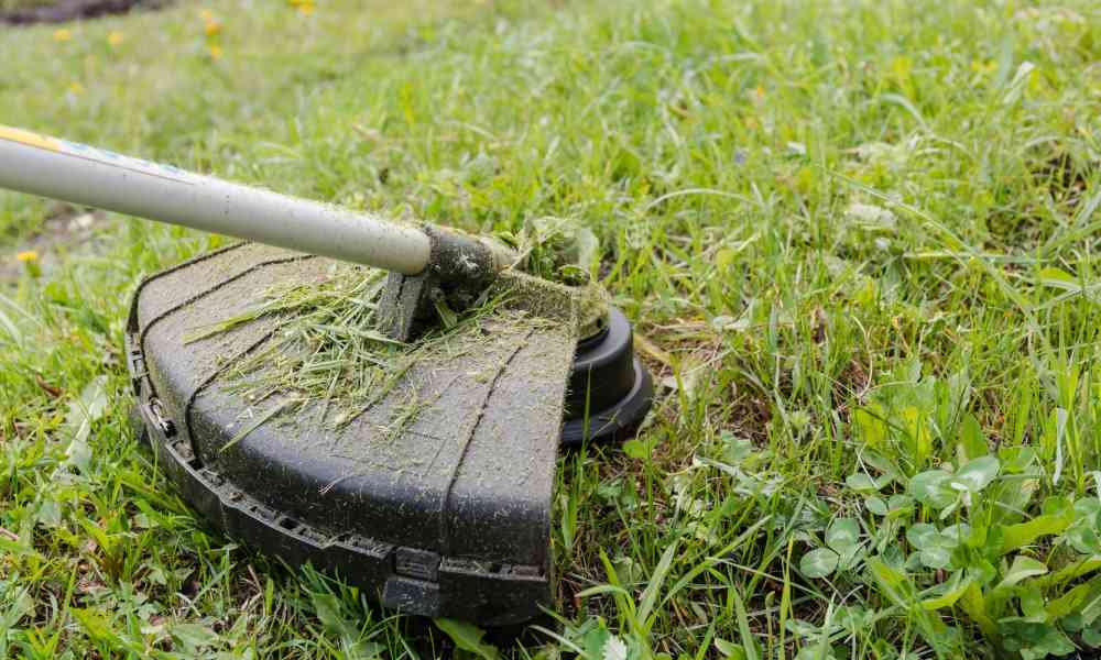 EGO Power+ 15-Inch Cordless Brushless String Trimmer Review