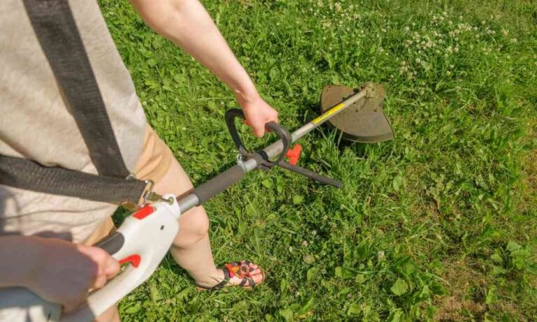 How Do You Adjust the Carburetor on a Weed Eater