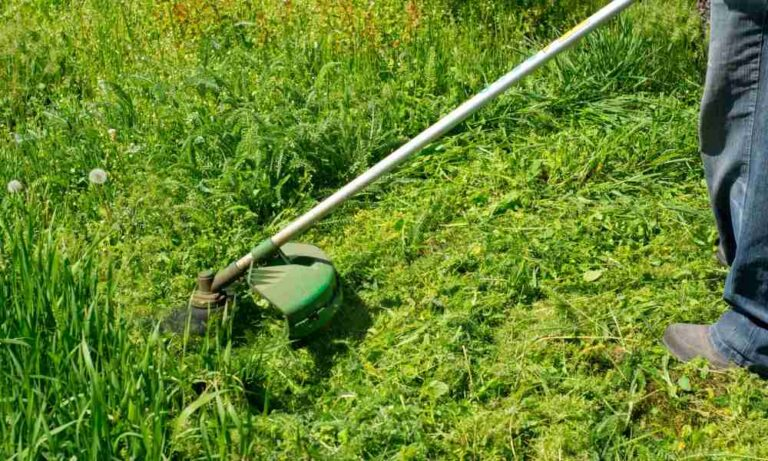 How to Mix Weed Eater Gas