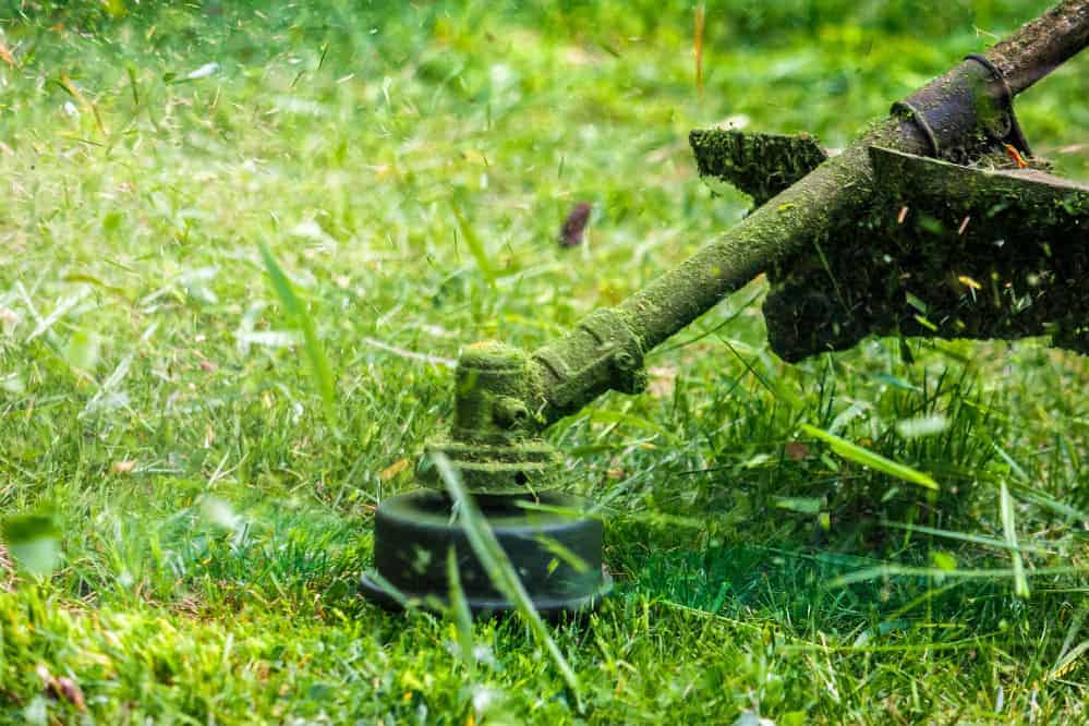 How to Use a String Trimmer: The Easiest Way to Do It