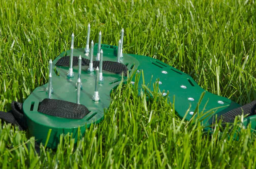 Best Lawn Aerators: The Secret to a Healthy Lawn