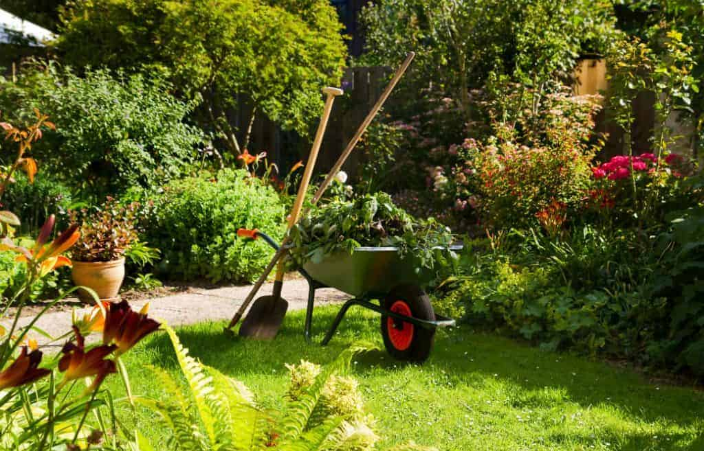 Best Wheelbarrows: Quality and Convenience in One