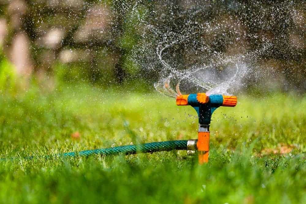 Best Garden Sprinklers for Worry-Free Maintenance