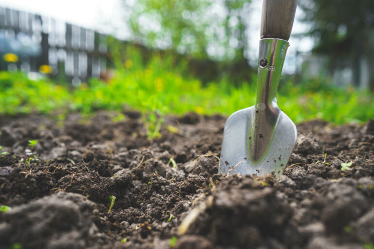 Best Shovels for Your Garden