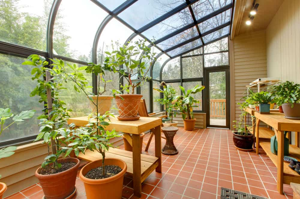 What Are Greenhouses For